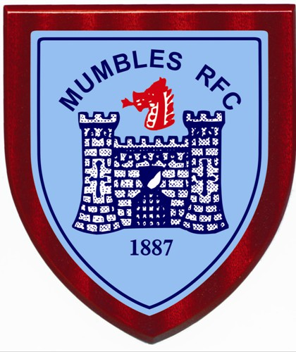 Image result for mumbles rfc